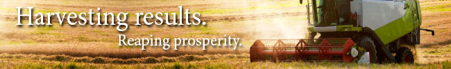 Grassroots_Web-Strip_Q3
