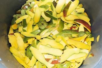 mango skins in bin