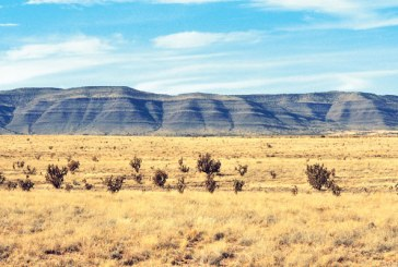 2011 New Mexico Profile: Outlook Brighter