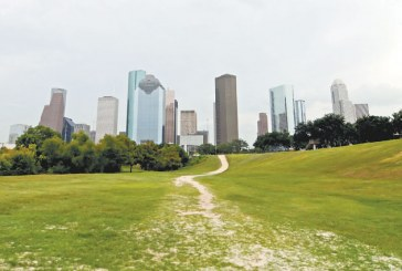2011 Houston Profile: Complex Market Keeps Retailers Sharp