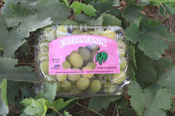 Grapery Introduces New Cotton Candy Grapes