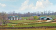 Kentucky-Horse-Farm