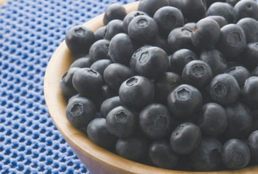 Eating Blueberries May Reduce Growth, Spread of Breast Cancer