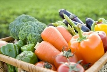 Organic Food Sales Hit High in 2011