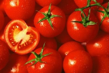 Tomato Company Ex-Chief Pleads Guilty In SK Foods Schemes