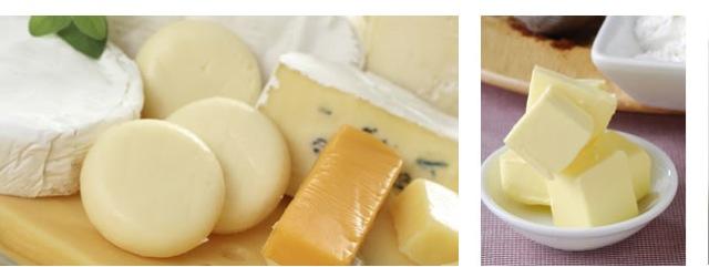 benelact-dairy