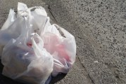 First Statewide Plastic Bag Ban In Effect