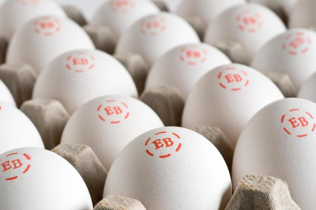 Egg Labels   Print the Best Before Date and Size of your Eggs