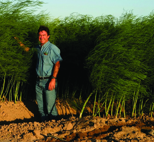 Giumarra Asparagus Grower Becomes Fair Trade Certified
