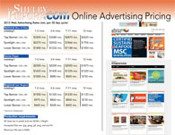 2013 Shelby Report Online Advertising
