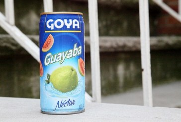 Goya Foods Breaks Ground At New HQ In Jersey City