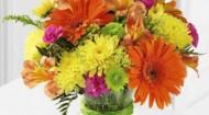 safeway floral