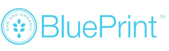 Blueprinttm brand shelby report blueprinttm brand malvernweather Images