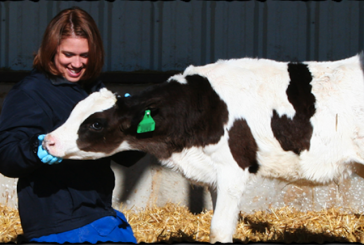 Aurora Organic Dairy Donated 28K Gallons To Hunger Relief In 2012