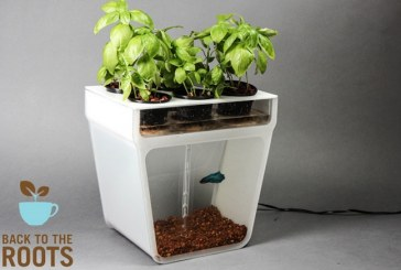 Back To The Roots Launches Fish Tank That Grows Food