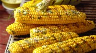 florida sweet corn grilled