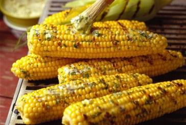 Florida Sweet Corn: Slow Start, Record Finish