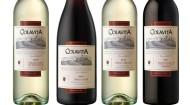 TERLATO WINES COLAVITA WINE