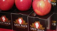 Lady Alice Apples
