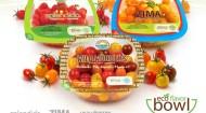Mastronardi-Eco Flavor-2014 copy