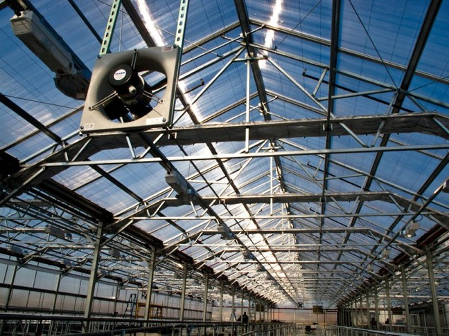Commercial Greenhouse Now Operating On Roof Of Brooklyn Whole Foods