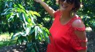 The Produce Mom Lori Taylor picks cherries.