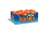 Wonderful Halos, Mulholland Citrus Collaborate To Expand Mandarin Market