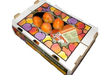 New Giumarra 'Persimmon Pack' Features Mrs. Krause's Hachiya Recipes