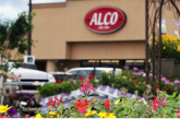 Alco Store Leases, Headquarters Building Up For Sale