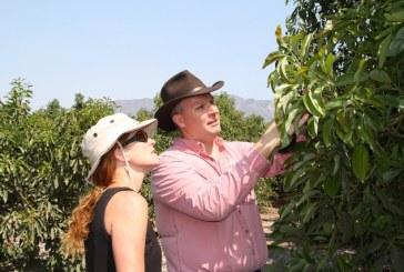 Tim Spann Returns To California Avocado Commission