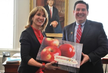 Domex Superfresh Delivers Apples To Mass. Lt. Governor To Honor Super Bowl Wager