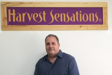 Harvest Sensations Taps Ranno For President's Role