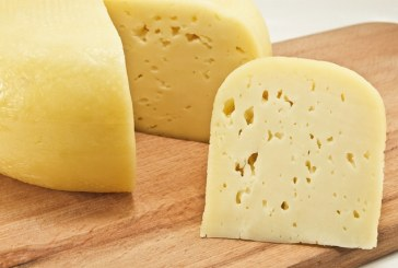 U.S. Cheese Market Evolving With Shifting Consumer Perspectives