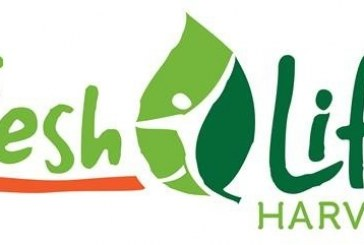 Next Level Fresh Launches Single-Serve, Whole Ear Of Corn