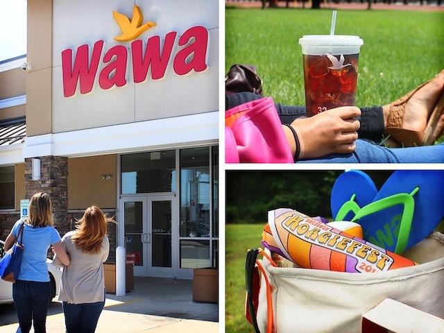 WAWA WEB