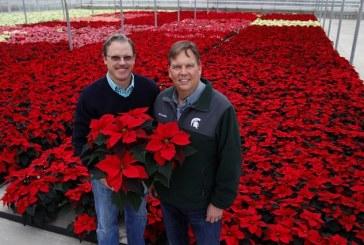 Meijer, Masterpiece Flower Co. Enjoy 50-Year Partnership In Michigan