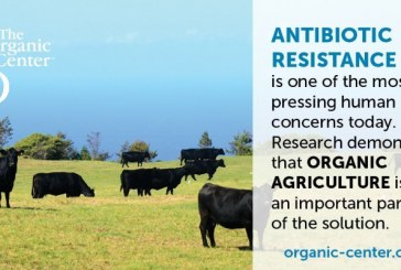 Review Paper: Organic Practices Help Reduce Exposure To Antibiotic-Resistant Bacteria