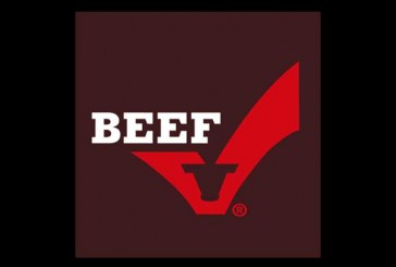 Beef Promotion & Research Board Searching For A New CEO