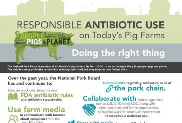 U.S. Pig Farmers Celebrate Progress On Antibiotic Stewardship