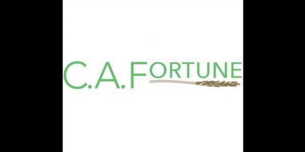 CA Fortune logo