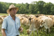 Organic Valley Becomes Largest Producer Of Organic, 100% Grass-Fed Dairy In U.S.