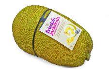 Friedas-Jackfruit_Tagged