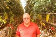 Backyard Farms Taps Greenhouse Veteran As Head Grower