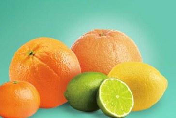 Wonderful Citrus Doubles Grapefruit Position With DNE Acquisition