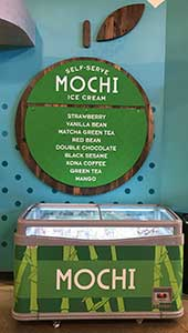 Mochi cases