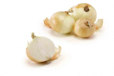 Giumarra Forecasts Excellent Vidalia Onion Volumes This Spring