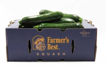 Farmer's Best Squash Program Reports Strong Production