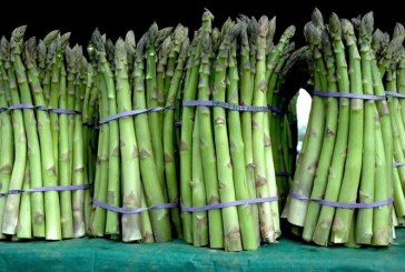 New Michigan Asparagus Advisory Board Research Delves Into The Category At Retail