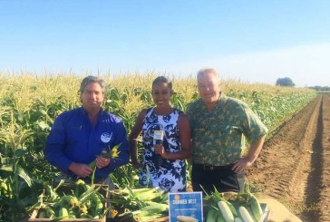 'Colonel Of Corn' Completes Second Tour To Promote Amaize Sweet Corn