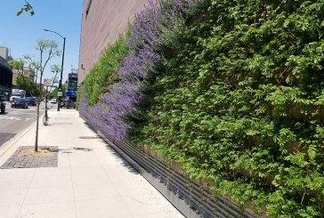 Living Wall Highlights New Whole Foods In Chicago Neighborhood